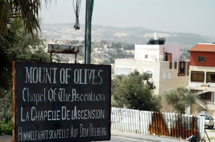 A Picture of the Mount of Olives in Jerusalem